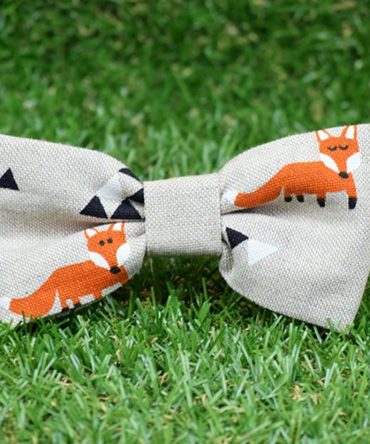 Pajarita estampada Triangle Fox